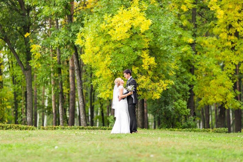 户外美好的婚礼夫妇 他们亲吻并且互相拥抱 免版税图库摄影
