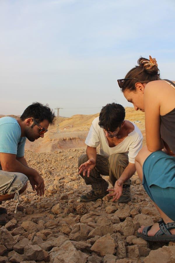 户外以色列学生在自然 免版税库存照片