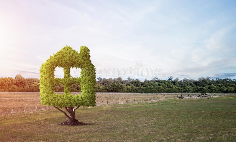 房子形状的绿色植物增长在绿色领域 向量例证