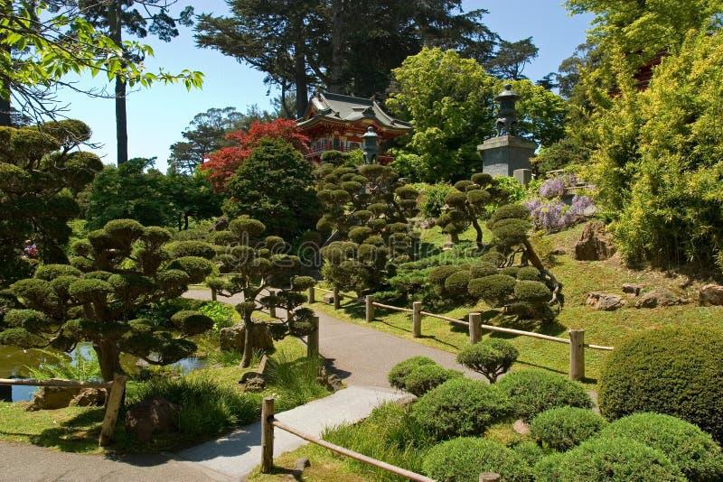 房子日本人茶 库存图片