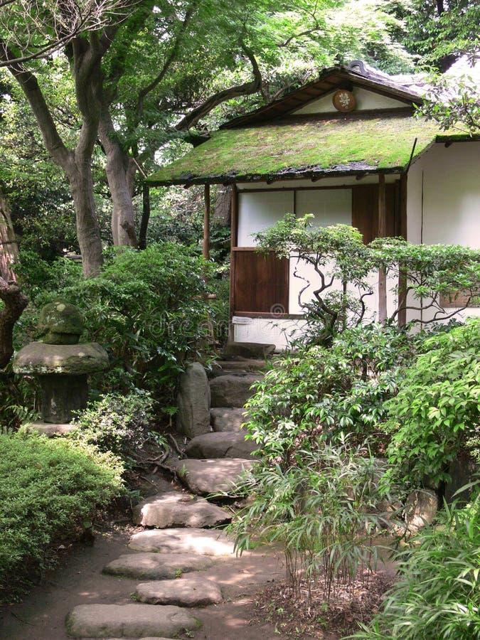 房子日本老茶 免版税库存图片