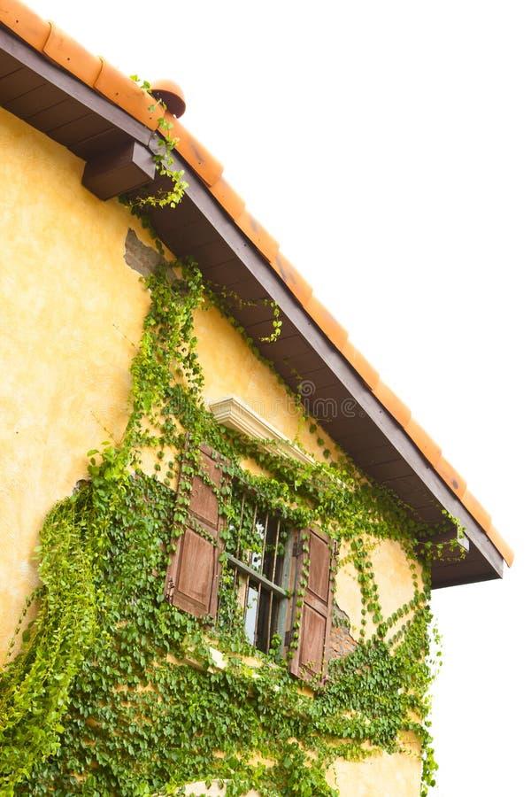 房子热带葡萄酒 库存照片