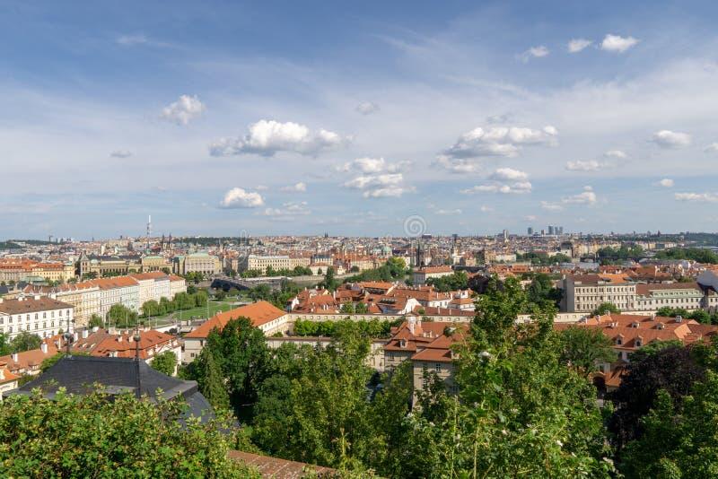 房子红色屋顶在有树绿色叶子的布拉格  城市的看法在夏天 免版税图库摄影