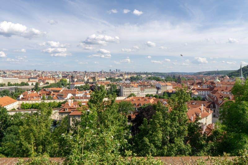房子红色屋顶在有树绿色叶子的布拉格  城市的看法在夏天 库存图片