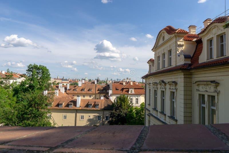 房子红色屋顶在有树绿色叶子的布拉格  城市的看法在夏天 图库摄影