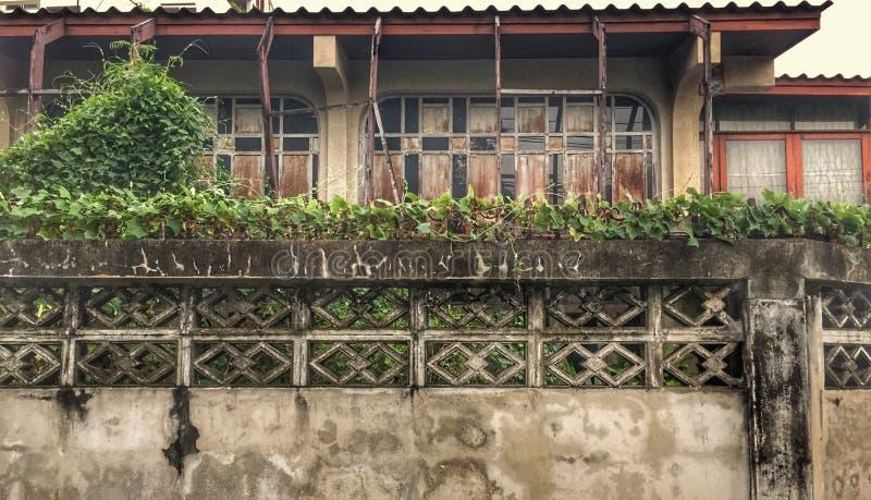 房子老木 图库摄影