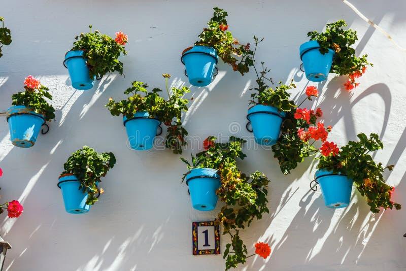 房子装饰的门面有花的在蓝色罐 库存图片