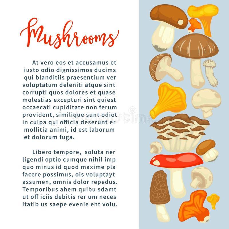 所有可食的种类成熟森林蘑菇在增进海报的与样品发短信 皇族释放例证