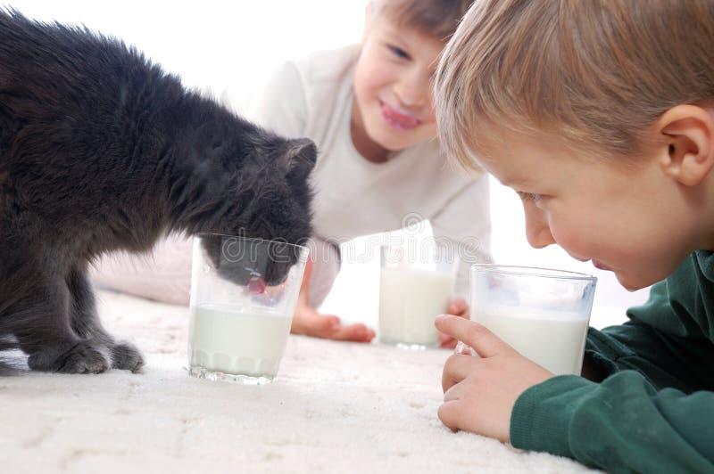 所有喜欢牛奶 库存图片