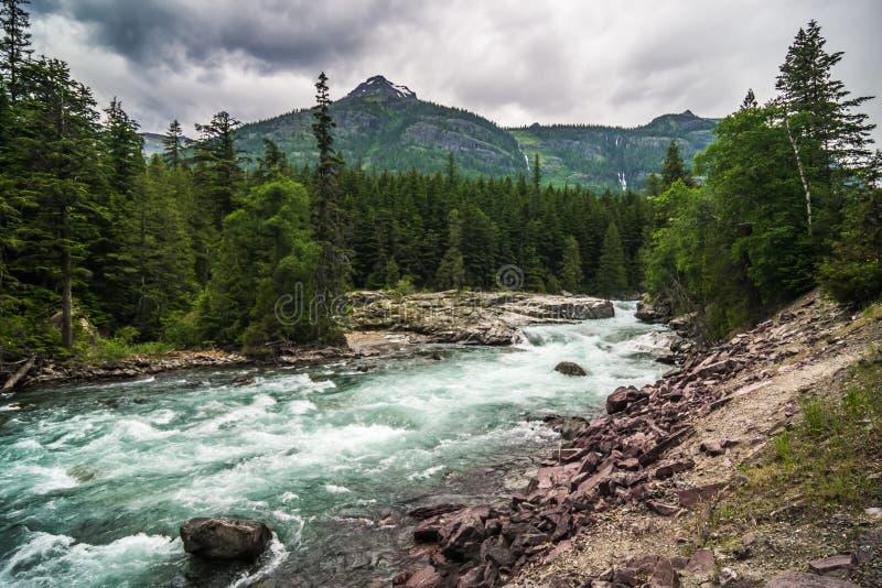 扁平头的河急流在冰川国立公园蒙大拿 库存照片