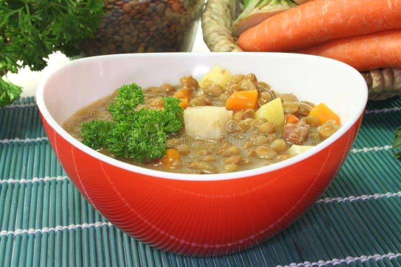 扁豆炖煮的食物 库存图片
