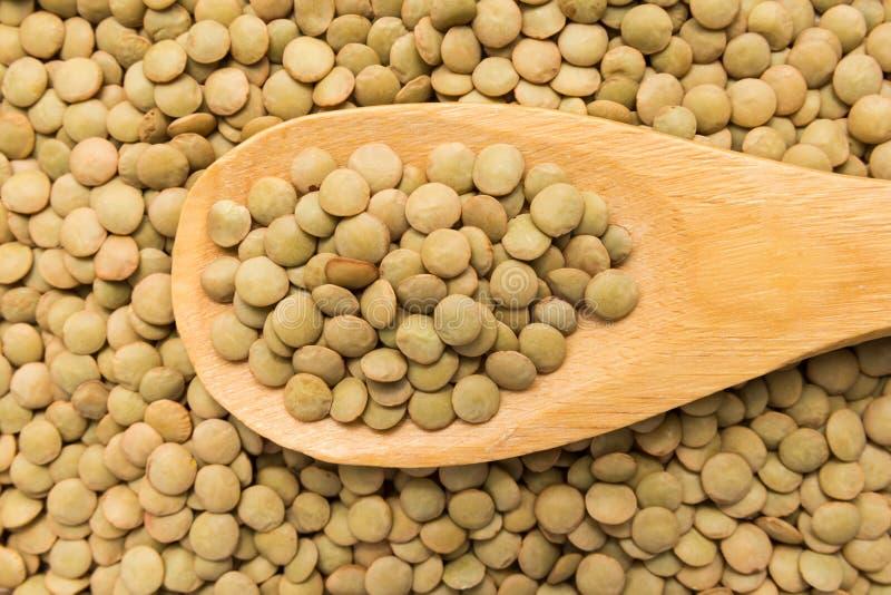 扁豆豆类 在木匙子的五谷 关闭