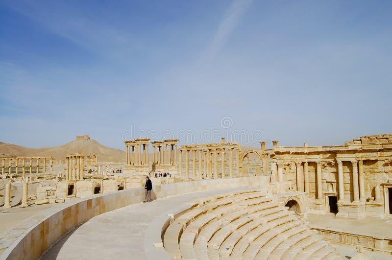 扇叶树头榈废墟-叙利亚 图库摄影