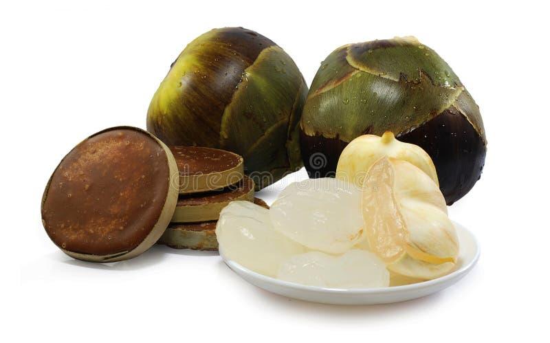 扇叶树头榈棕榈、在白色隔绝的棕榈汁或者桄榔果子 库存图片