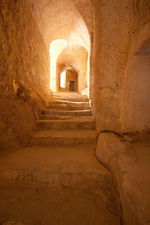 扇叶树头榈-叙利亚古城废墟  图库摄影