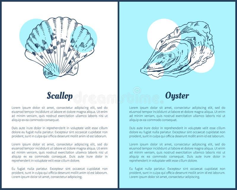 扇贝和牡蛎海洋生物海报 向量例证
