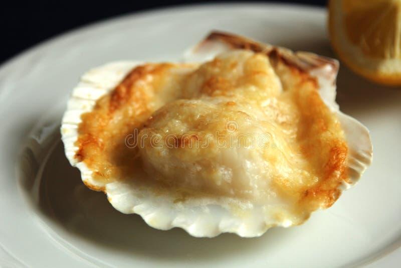 扇贝澳大利亚焦干酪 库存图片