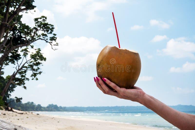 手中椰子的饮料 免版税库存照片