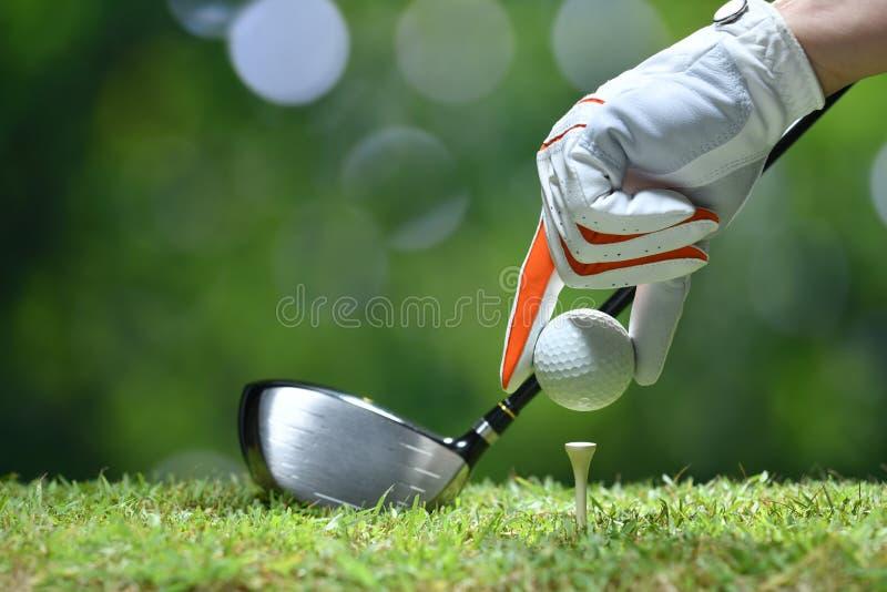 手举行与发球区域的高尔夫球 库存图片