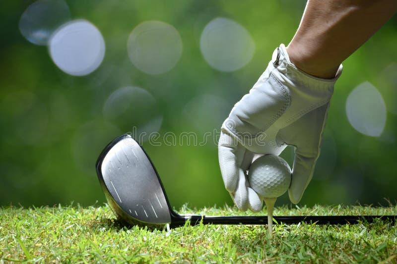 手举行与发球区域的高尔夫球 免版税库存照片