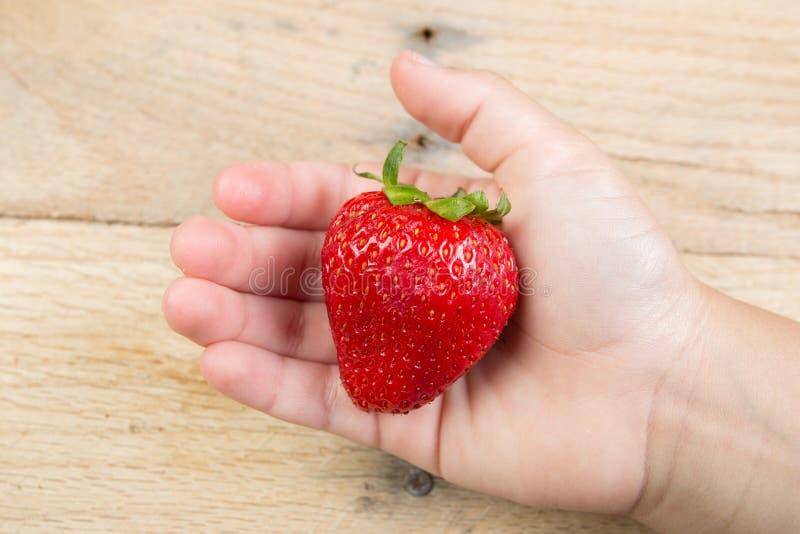 手举行的一个草莓 图库摄影