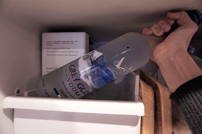 手从冷冻机冰格举灰色鹅瓶 免版税库存图片