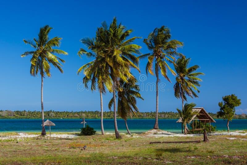 黑手党海岛棕榈滩  库存图片
