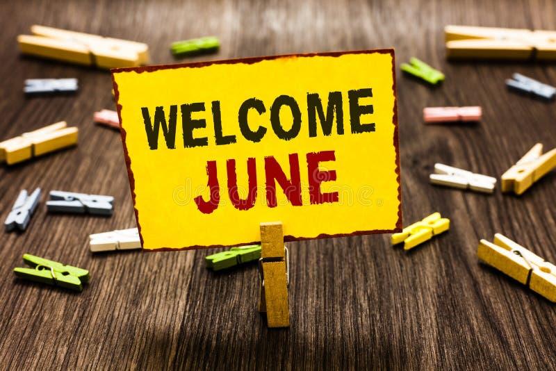 手写文本文字欢迎6月 概念意思日历第六个月二季度三十几天问候晒衣夹holdin 向量例证