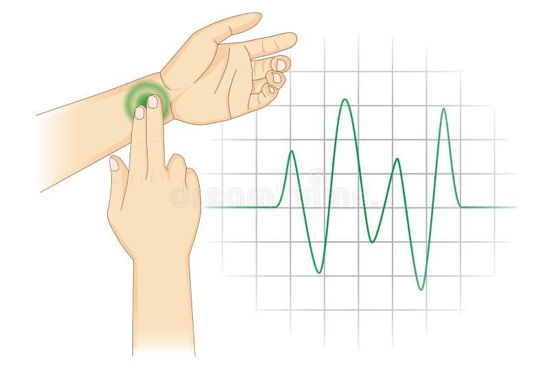 手动地检查您的心率与地方两手指在腕子 皇族释放例证