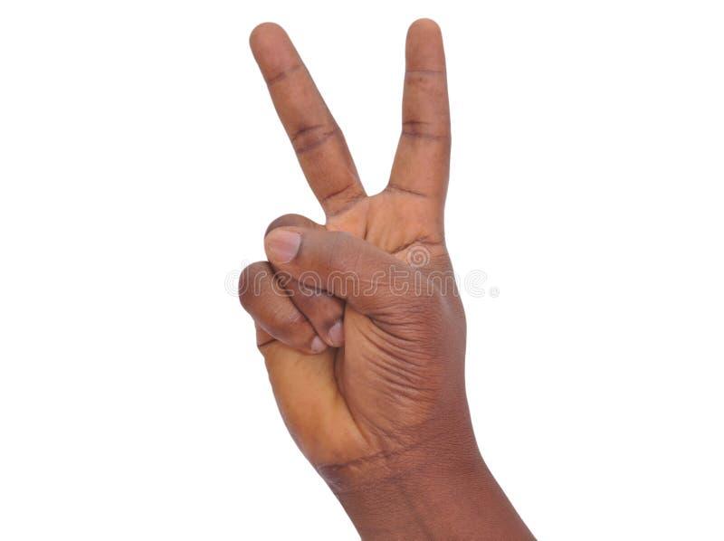 手势语 库存图片