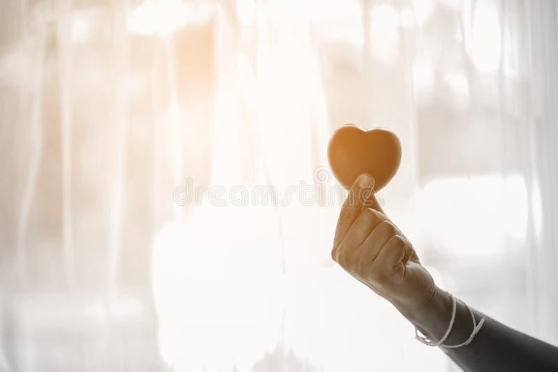 手和心脏形状一点红色心脏 免版税库存照片