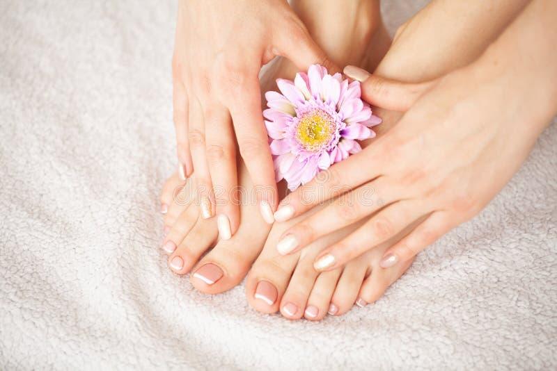 手和钉子关心 美好的妇女` s脚和手在修指甲和修脚以后在美容院 温泉修指甲 免版税图库摄影
