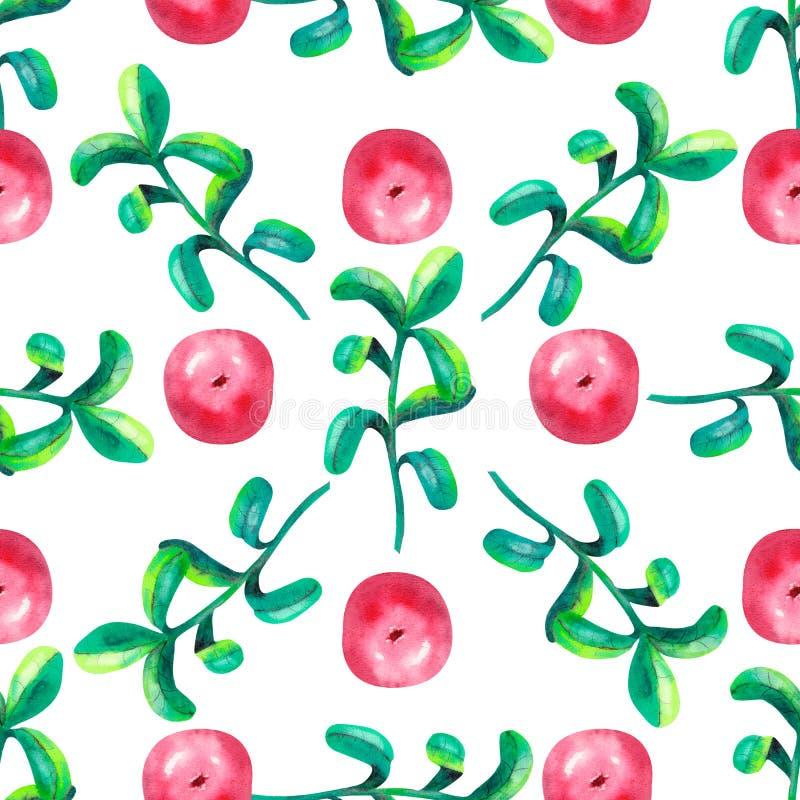 手图画植物的无缝的样式用与叶子的越橘 r 纺织品印刷品的,包装纸用途 库存例证