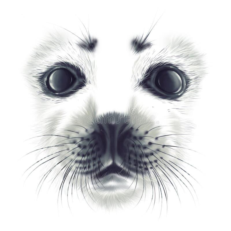 手图画画象海狮幼崽Belek 库存例证