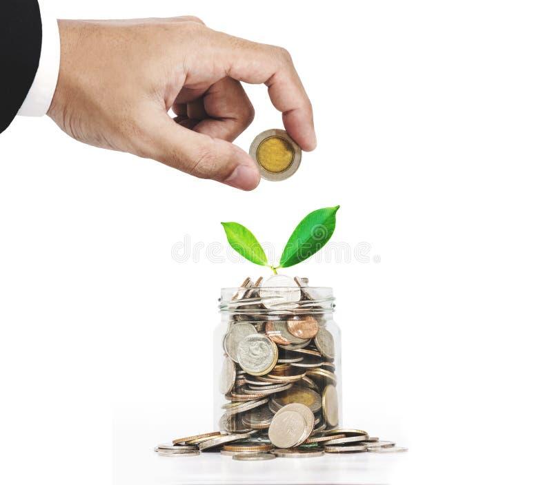 手在有植物发光的玻璃瓶子投入了硬币,存金钱为未来,被隔绝在白色背景 库存图片
