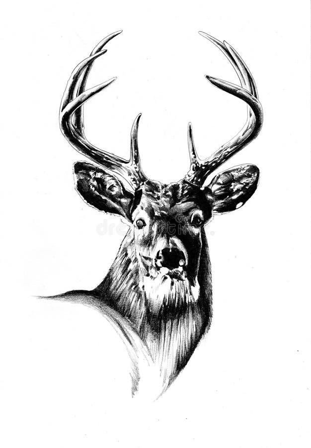 画手工制造自然的古色古香的雄鹿艺术 免版税库存图片