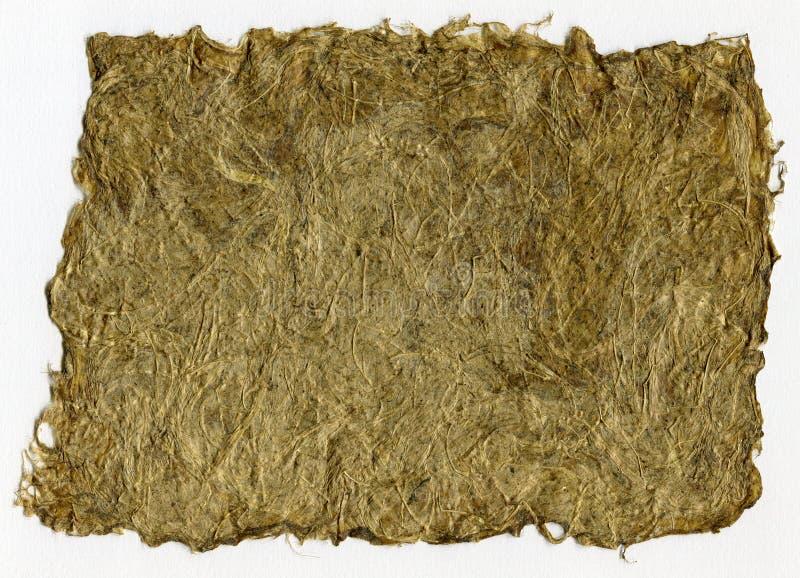 手工制造草本纸扫描与干草纹理的 免版税库存图片