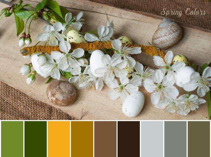 手工制造装饰分支用在花瓶的复活节彩蛋 库存图片