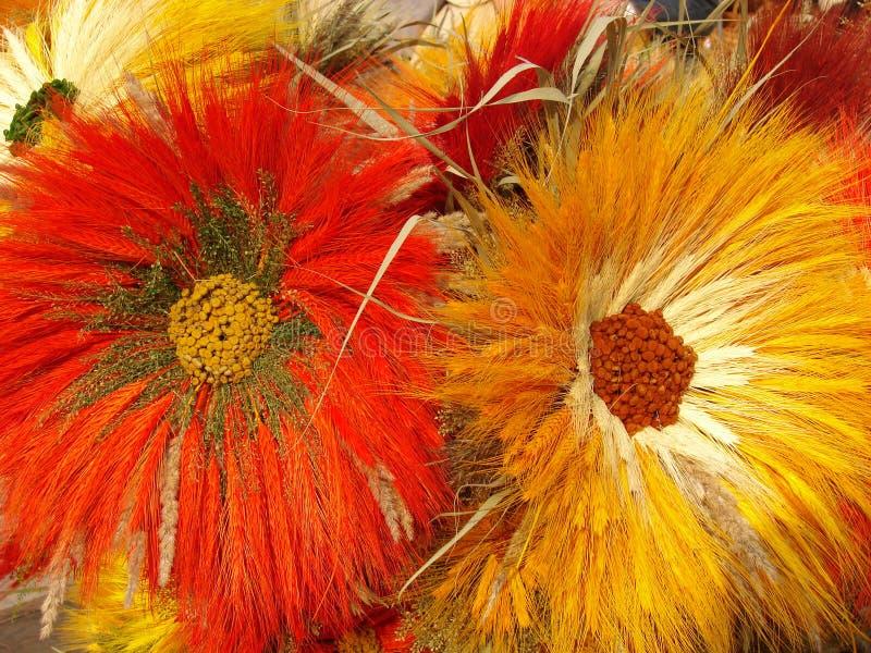手工制造2朵的花 库存图片