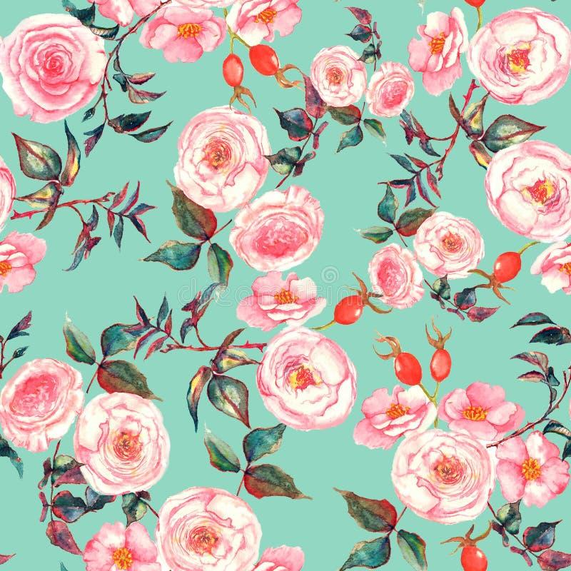 手拉的与嫩桃红色玫瑰的水彩花卉无缝的样式在浅兰的背景 库存例证