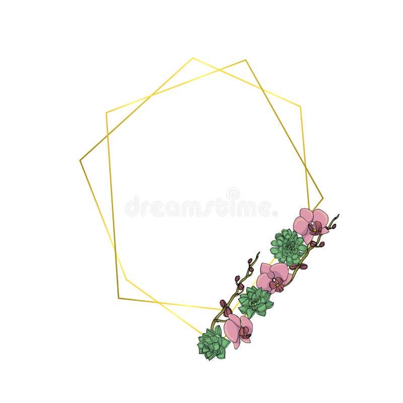 手拉的乱画样式多汁植物和兰花花花圈与多角形诗歌选,葡萄酒几何框架 皇族释放例证