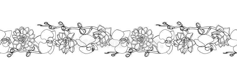 手拉的乱画样式多汁植物和兰花花 无缝的刷子,不尽的边界 皇族释放例证