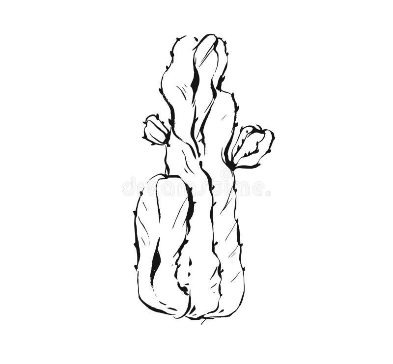 手拉的传染媒介摘要艺术性的墨水构造了多汁仙人掌植物花的图表略图例证 向量例证