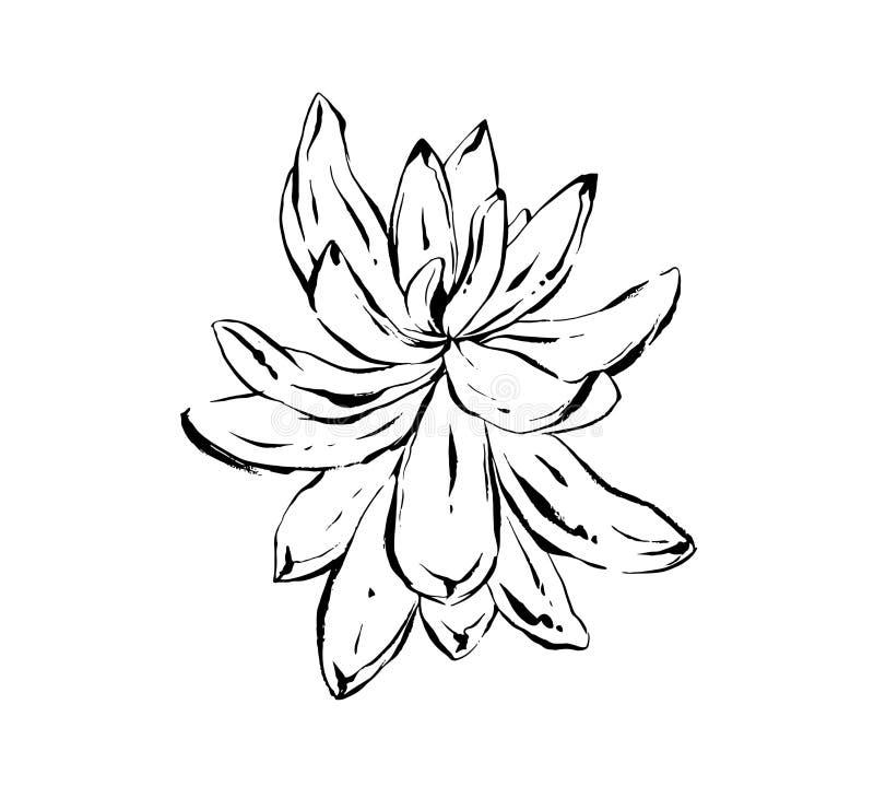 手拉的传染媒介摘要艺术性的墨水构造了多汁仙人掌植物花的图表略图例证 皇族释放例证