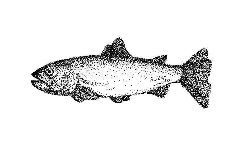 手拉的传染媒介鱼 鳟鱼墨水剪影  皇族释放例证