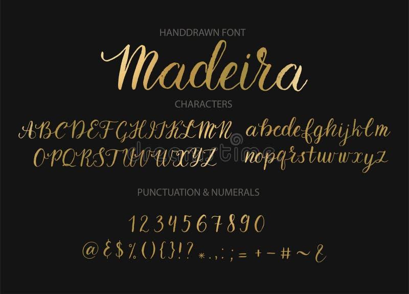 手拉的传染媒介剧本字体 刷子样式织地不很细书法草书手稿字体 向量例证