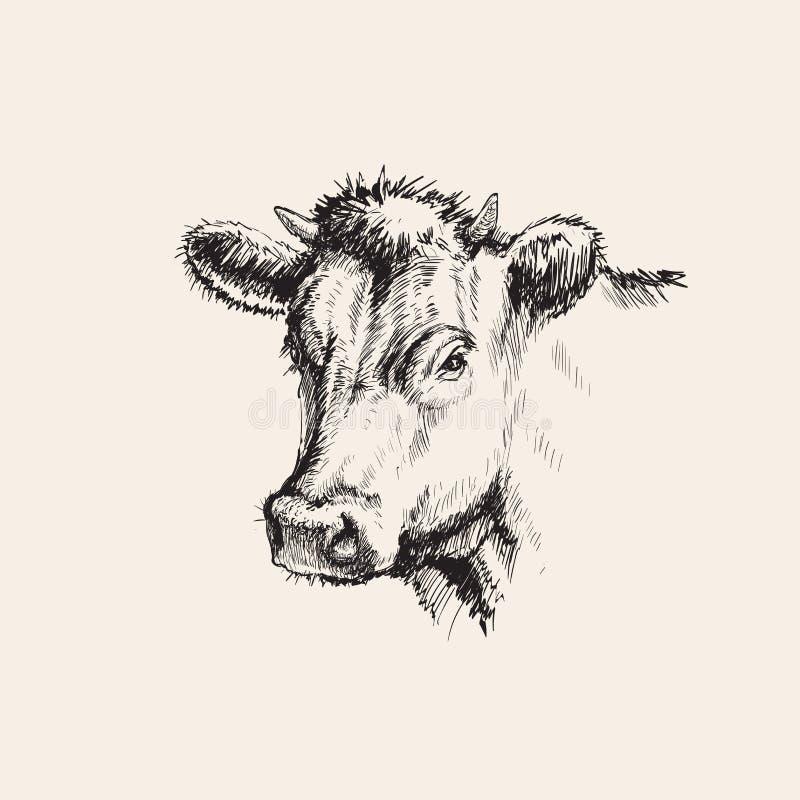 手拉的剪影母牛传染媒介例证 向量例证