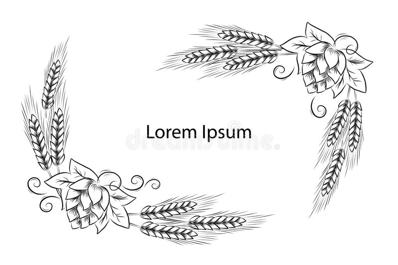 手拉的啤酒花球果树和麦子头概述例证 向量例证