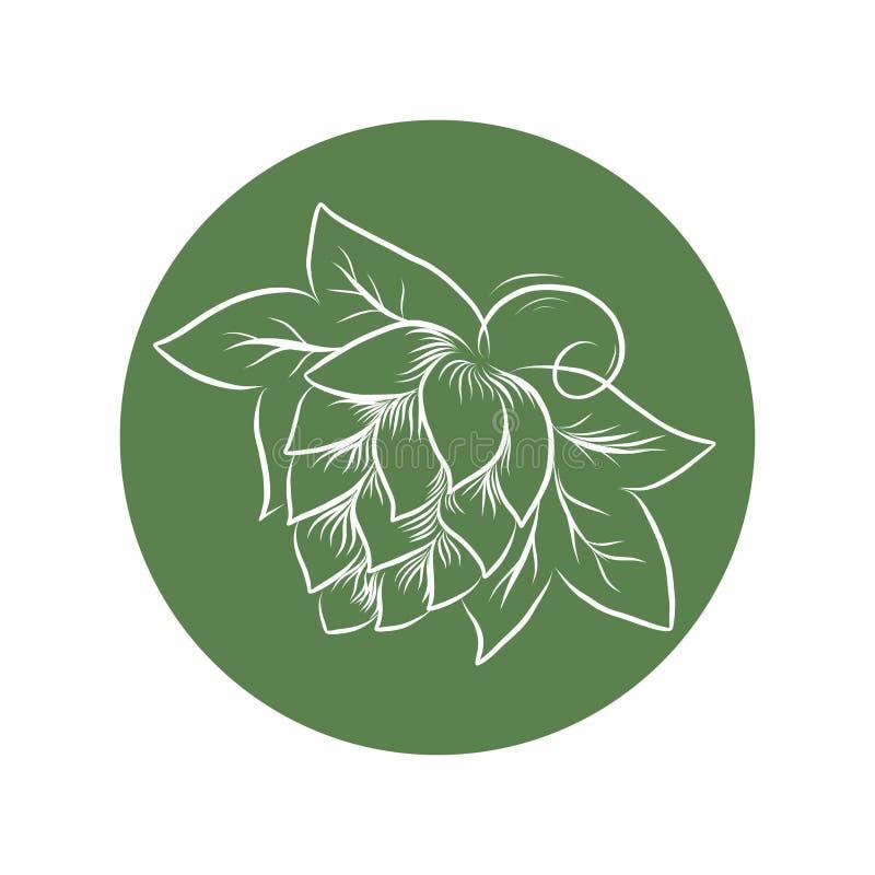 手拉的啤酒花球果树和麦子头概述例证 库存例证