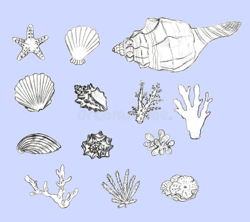 手拉的在蓝色背景设置的贝壳和珊瑚 库存例证